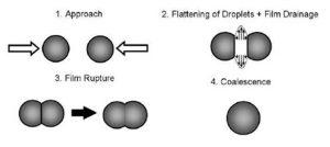 Figure 1. – Schematic process of droplet collision and coalescence.